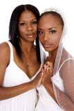 Bride and maid of honor Royalty Free Stock Images