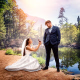 Bride makes an offer at the shore of lake Stock Photography