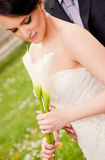 Bride marriage Stock Photography