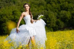 Bride on the meadow Royalty Free Stock Photo