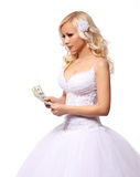Bride with money. holding and counting dollars bills. beautiful blonde young woman isolated Stock Images