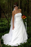 Bride N1. A bride standing in her wedding dress Royalty Free Stock Photo