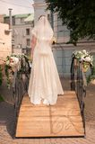 Bride in a white dress stock photography
