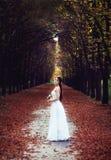 Bride in nature Stock Photos
