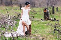 The bride near the cut tree Stock Photos