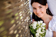 Bride near the hedge Royalty Free Stock Photography
