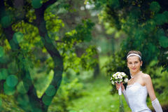 Bride near the tree Royalty Free Stock Photos