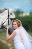 Bride next to a beautiful thoroughbred horse standing on the lawn. Royalty Free Stock Photo