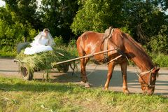 Bride in the old carriage Royalty Free Stock Images