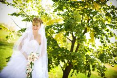 Bride with orchids Royalty Free Stock Photos