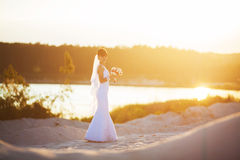 Bride at outdoor in a morning surrounded by golden sunlight royalty free stock photos