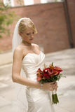 Bride Outdoors Royalty Free Stock Photo