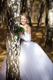 Bride in a park Royalty Free Stock Photography