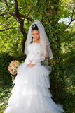 Bride in the park. Attractive young bride in the autumn park Stock Photos