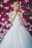 Bride on the peony background stock image