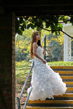 The bride. Photography activities, botanical garden of beauty Royalty Free Stock Images