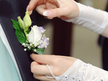 Bride Pinning Boutonniere Stock Photography