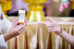 The bride points to the wedding ring in the luxury box in the groom`s hand. I love you Royalty Free Stock Images