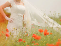 Bride in Poppies Stock Photos