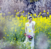 Bride portraint with white wedding dress in cole flower field Stock Photos