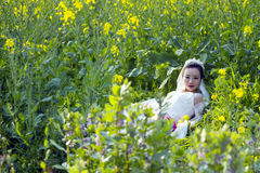 Bride portraint with white wedding dress in cole flower field Royalty Free Stock Photo