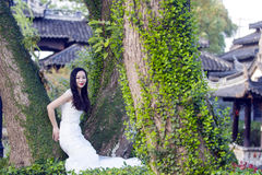 Bride portraint with white wedding dress  in front of Old trees and old building Stock Image