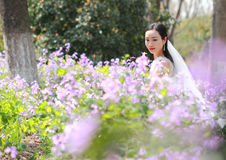 Bride portraint with white wedding dress in Orychophragmus violaceus flower field. A Chinese Bride with white wedding dress in Orychophragmus violaceus flower Royalty Free Stock Photography