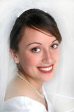 Bride Portrait. Portrait of bride on wedding day with veil Royalty Free Stock Images