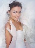 Bride portrait. Brunet bride portrait in studio stock photo