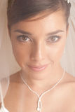 Bride portrait. Portrait of young beautiful smiling bride royalty free stock photography