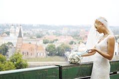 Bride portrait Royalty Free Stock Image