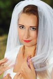 Bride portrait Stock Image
