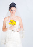 Bride portrait in studio. Beautiful young brunette bride portrait in studio Stock Photography