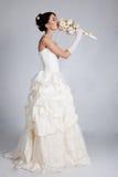 Bride portrait in studio. Beautiful young bride portrait in weddeing dress Royalty Free Stock Image