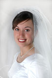 Bride Portrait Veil. Bride portrait closeup of face and veil Royalty Free Stock Photography