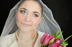 Bride portrait with veil Royalty Free Stock Images