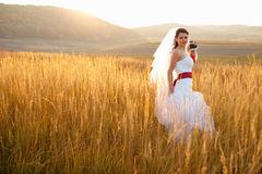 Bride poses on the golden autumn field with a great mountain lan Royalty Free Stock Photos