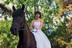 Bride poses on a horse Stock Images