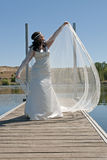 Bride poses with the veil Royalty Free Stock Photos