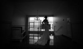Bride posing Stock Photos