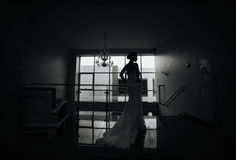 Bride posing Royalty Free Stock Photo