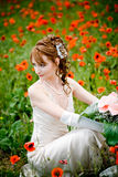Bride posing among poppies Royalty Free Stock Photos