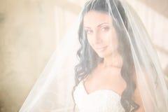 Bride posing in studio Royalty Free Stock Photos