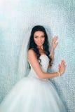 Bride posing in studio Stock Image