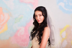 Bride posing in studio. Beautiful Bride posing in studio Stock Photo