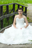Bride posing on wooden bridge Stock Images