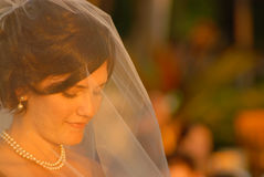 Bride in prayer. Beautiful, radiant young bride in prayer on her wedding day Stock Image