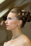 The bride in a profile Royalty Free Stock Image