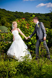 Bride pulling groom by hand at park Stock Image