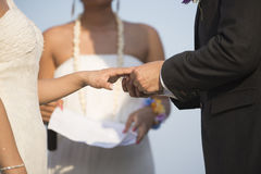 Bride Put the Wedding Ring on groom Royalty Free Stock Photos